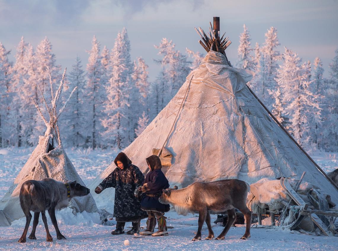 Фото природы крайнего севера