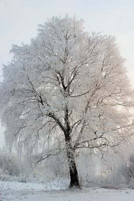 Сергей Милицкий, пейзажный фотограф