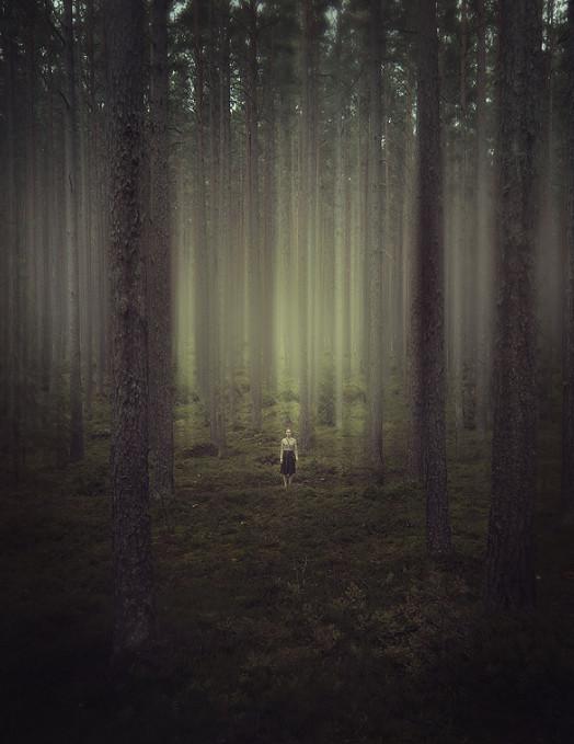 Фото прогулка лес девушка 22 фотография