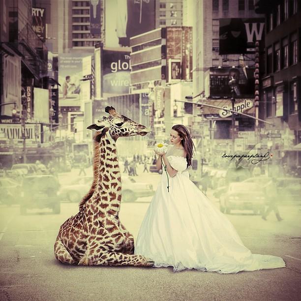 Девушка с жирафом в городе. Фотоколлажи Lovepaperplane