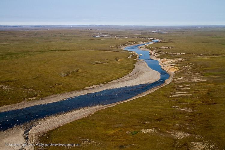 Река Мамонта
