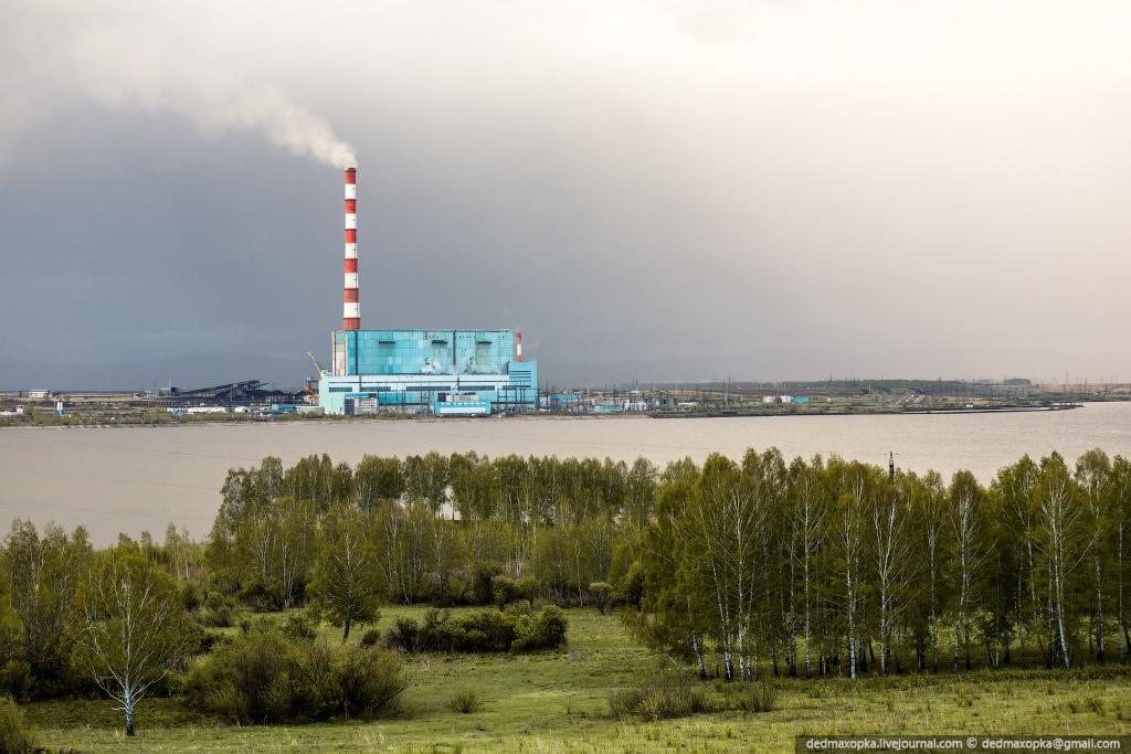 Березки на фоне Берёзовской ГРЭС