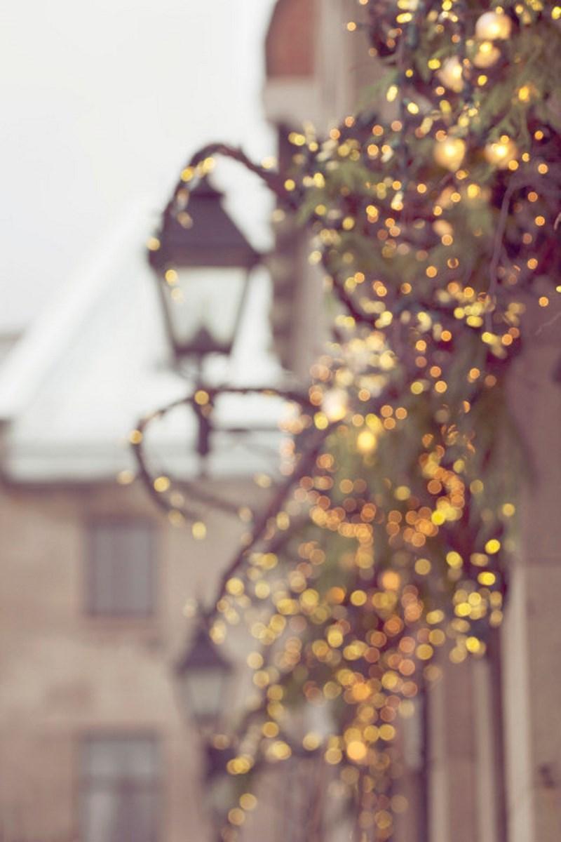 Новогодняя улица. Фото: Tulian