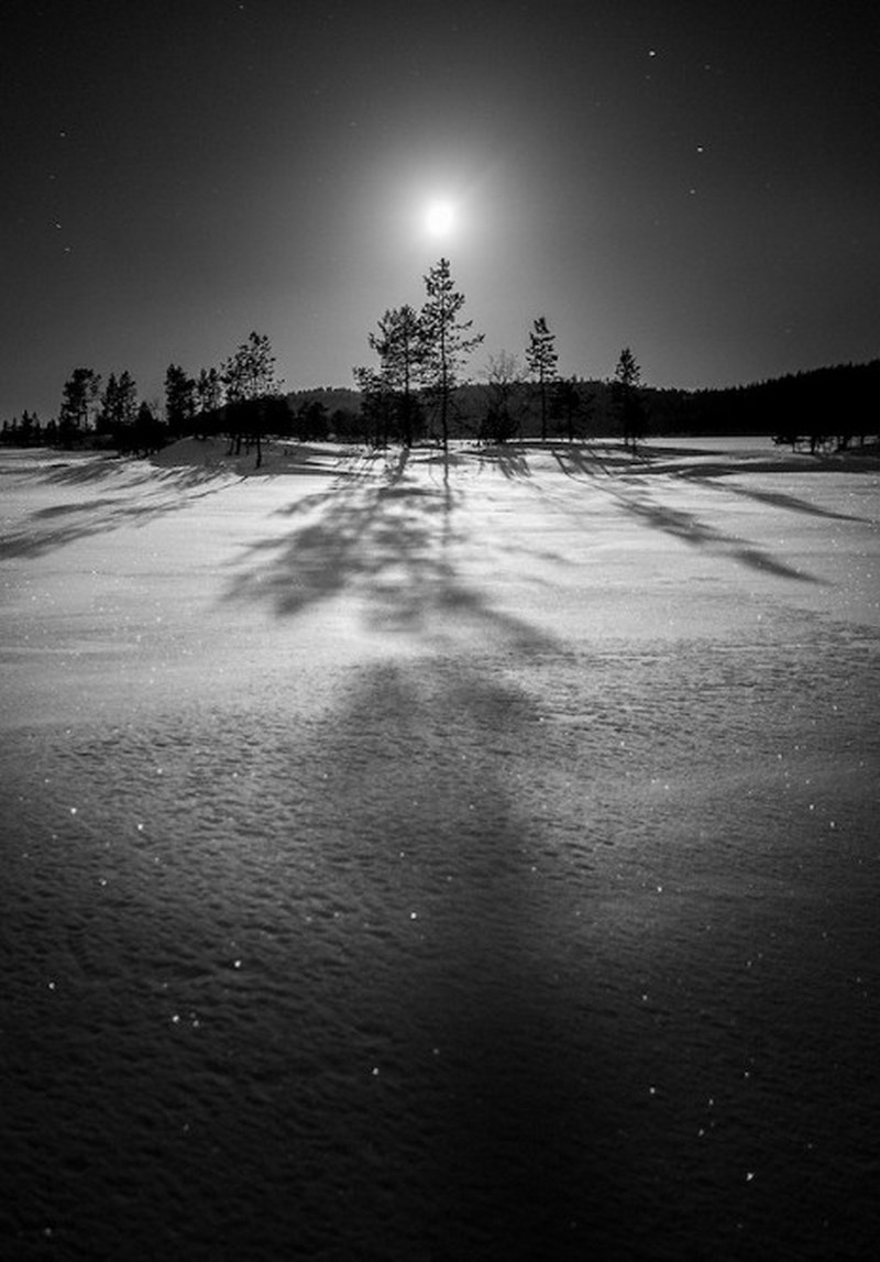 Зима. Фото: Julien Fumard