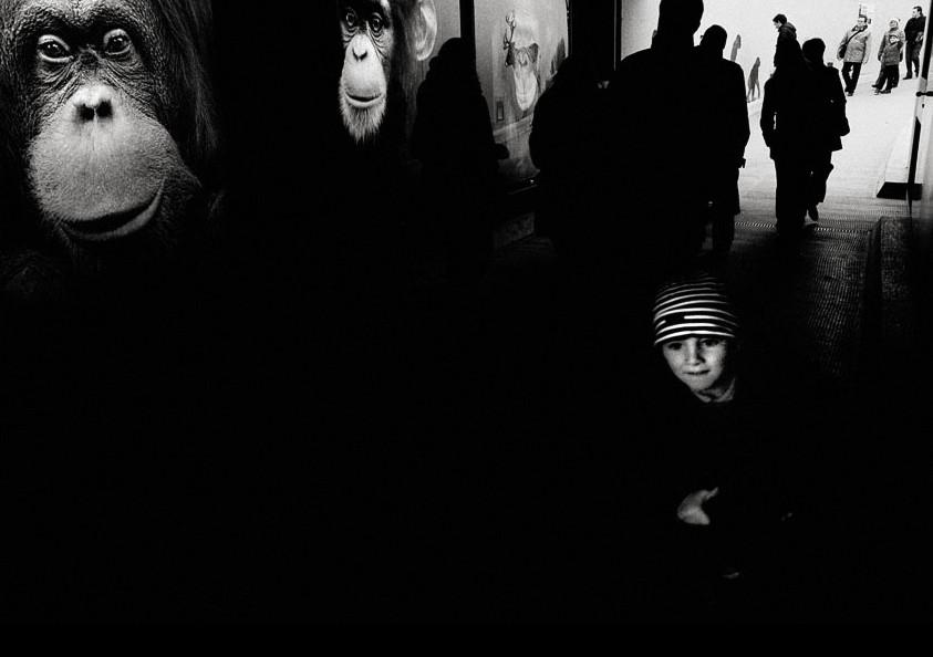 Мальчик у темной стены. Фото Elisabeth Schuh