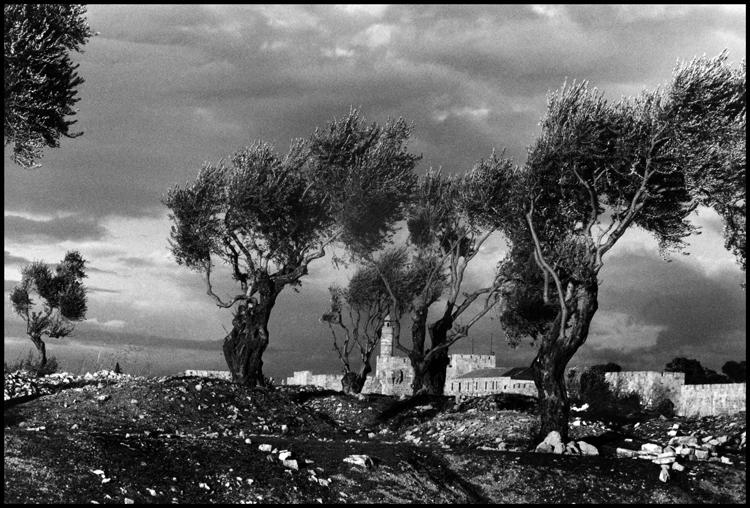 Иерусалим. 1957 г. Башня Давида и старая городская стена на израильской стороне. Фото: Берт Глинн