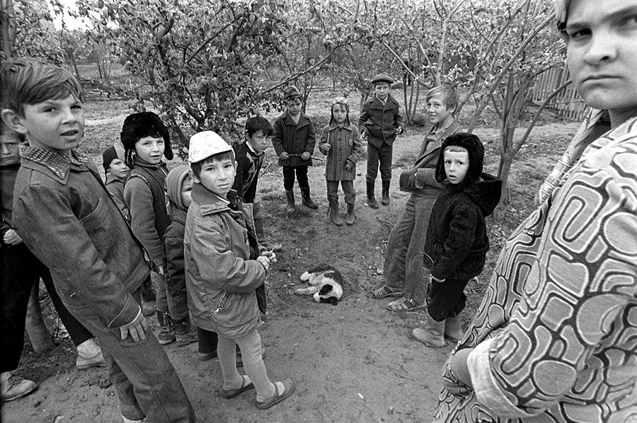 «Смерть дворового щенка», 1977, Кабардино-Балкария