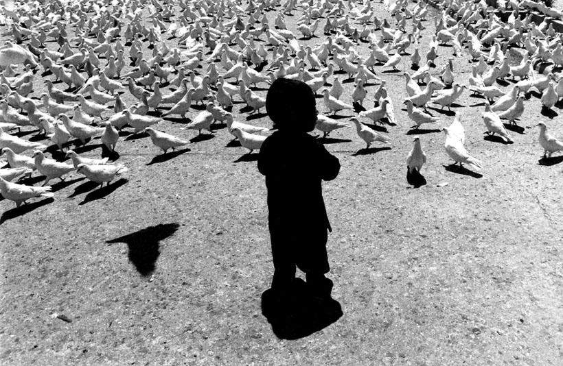 «Голуби в Мазари Шериф», Афганистан. 1986