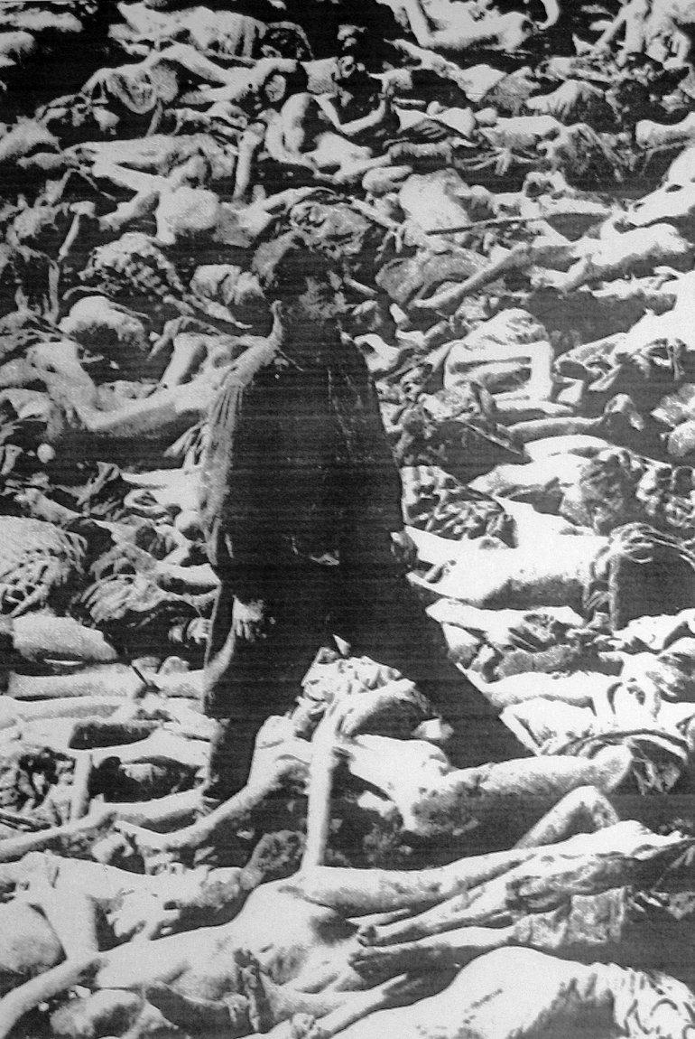 Доктор Фриц Кляйн стоит в братской могиле в Бельзене