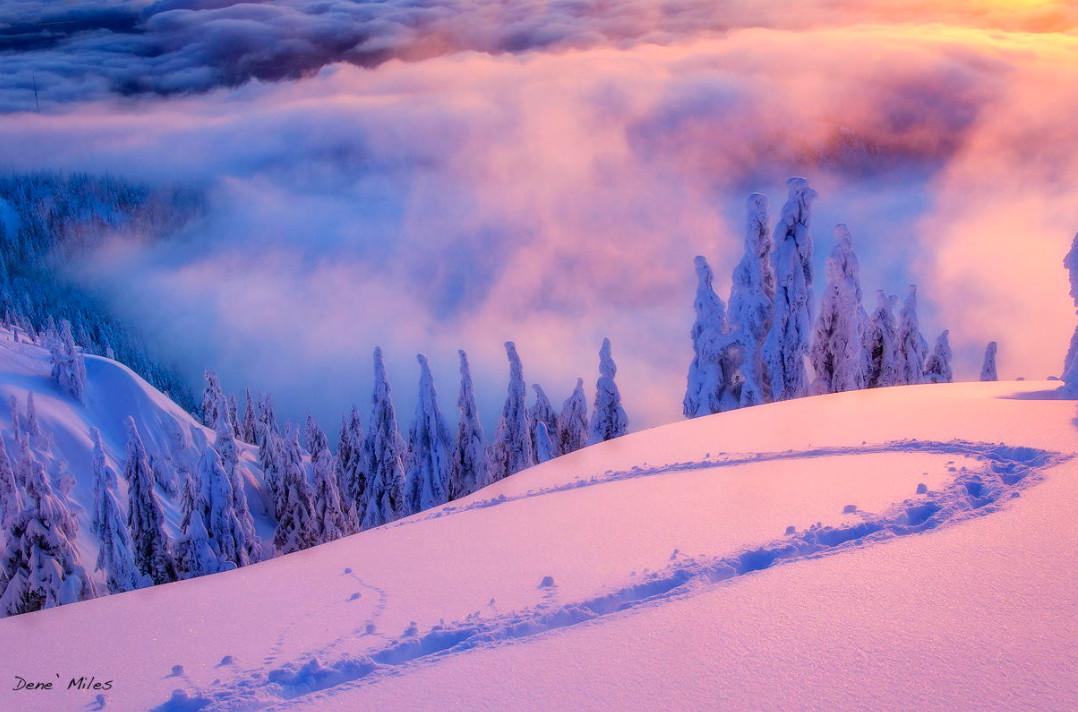 Туман в лучах восхода. Фото: Dene' Miles