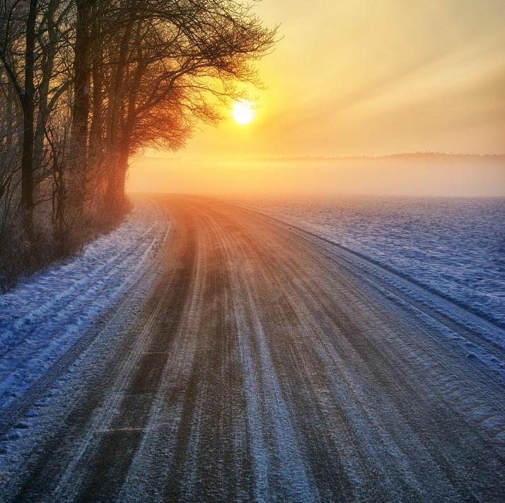 Дорога в зимний лес. Фото: Siegfried Haasch