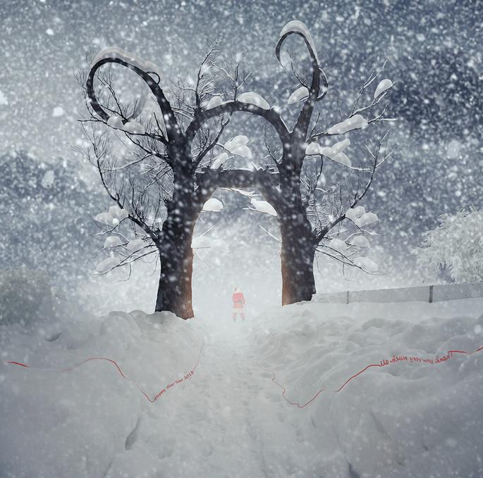 Зима. Фото: Карас Йонут