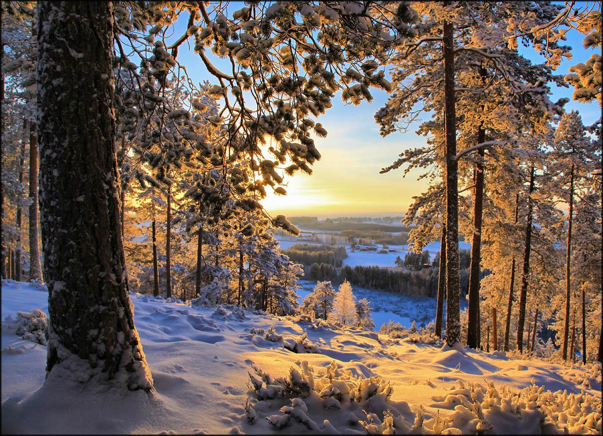 Фото: Valtteri Mulkahainen