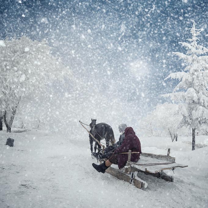 На санях. Фото: Карас Йонут