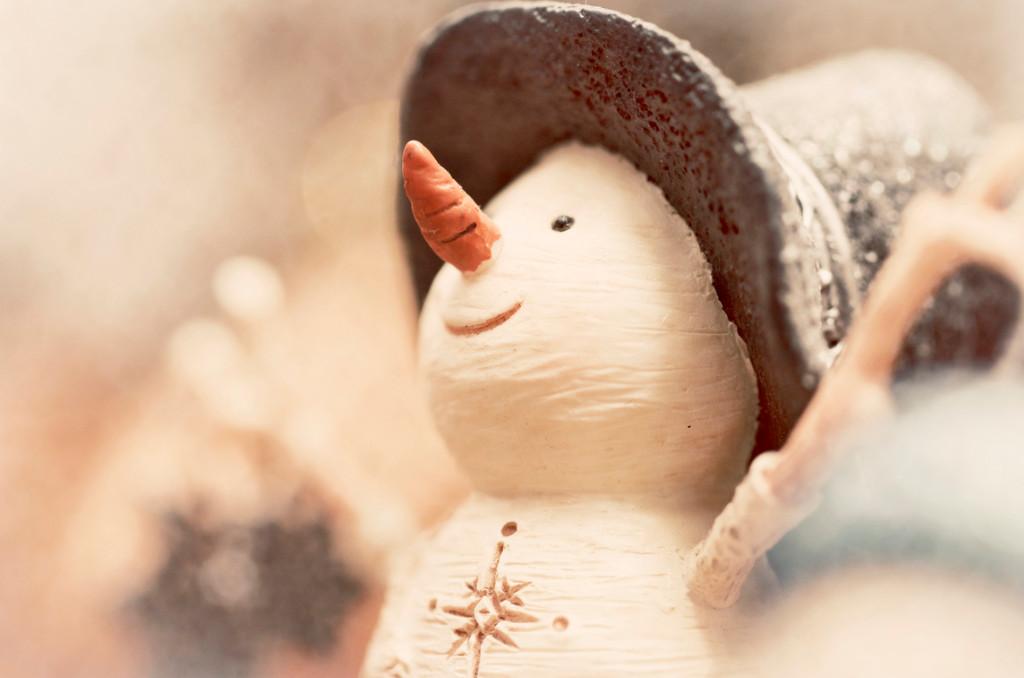Снеговик. Фото: Kim McDonald