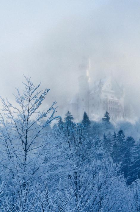 Туман и замок. Фото: Chris Knight