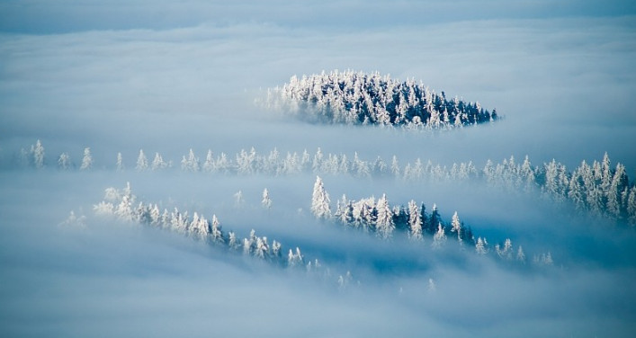 Фото: Marcin Jagiellicz