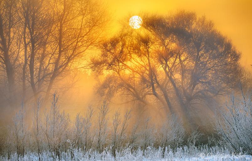 Туманное зимнее утро. Фото: C Keller