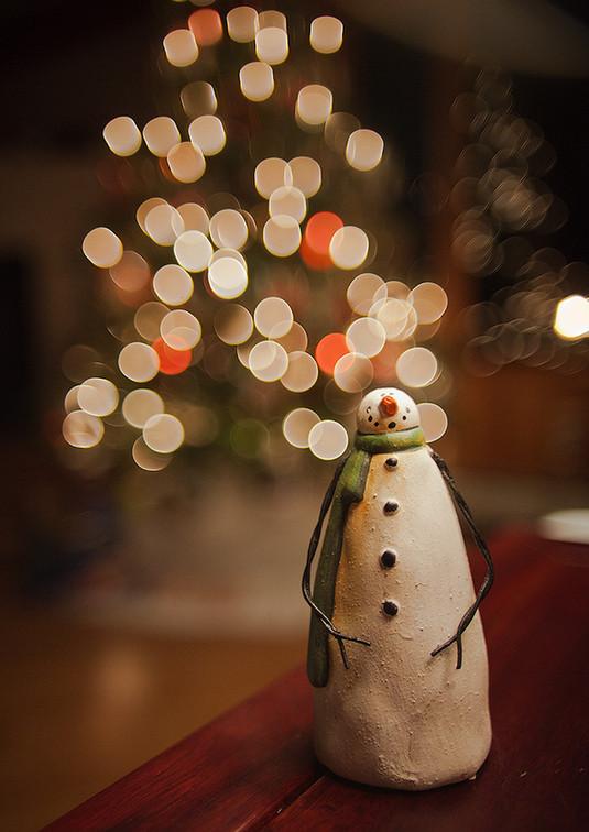 Снеговик. Фото: meta500px
