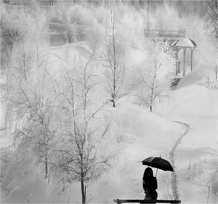 Фото: Михалюк Сергей