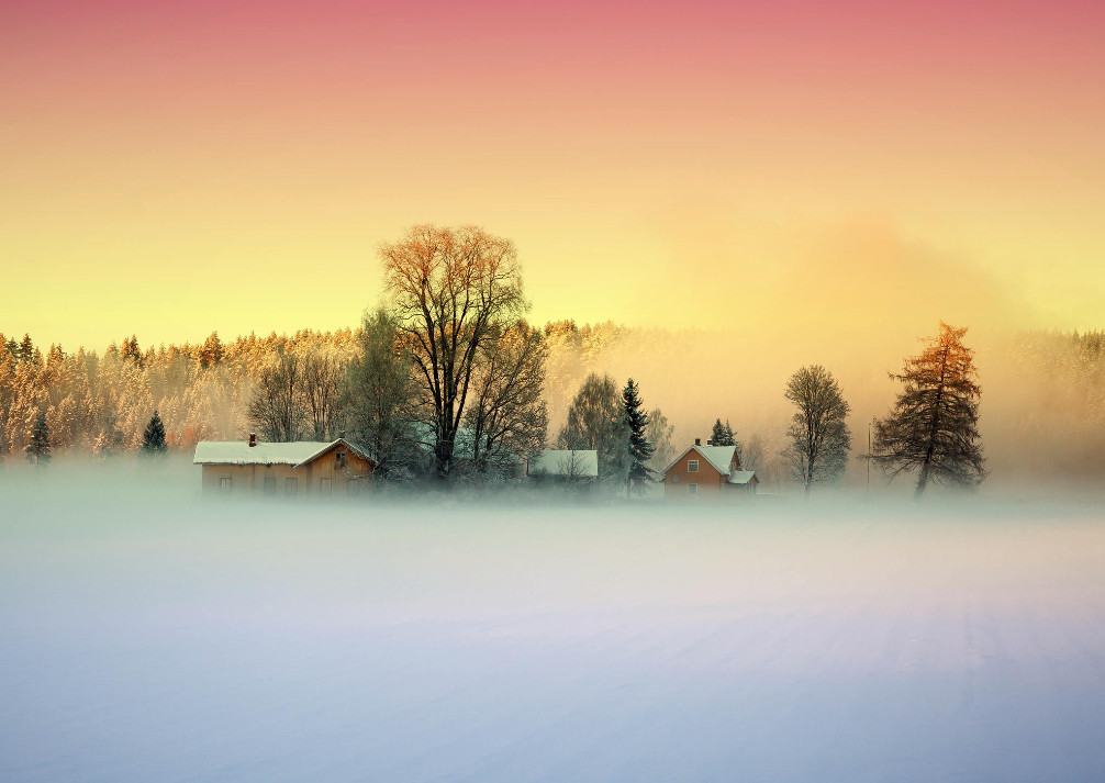 Туман зимой. Фото: Thomas Berger