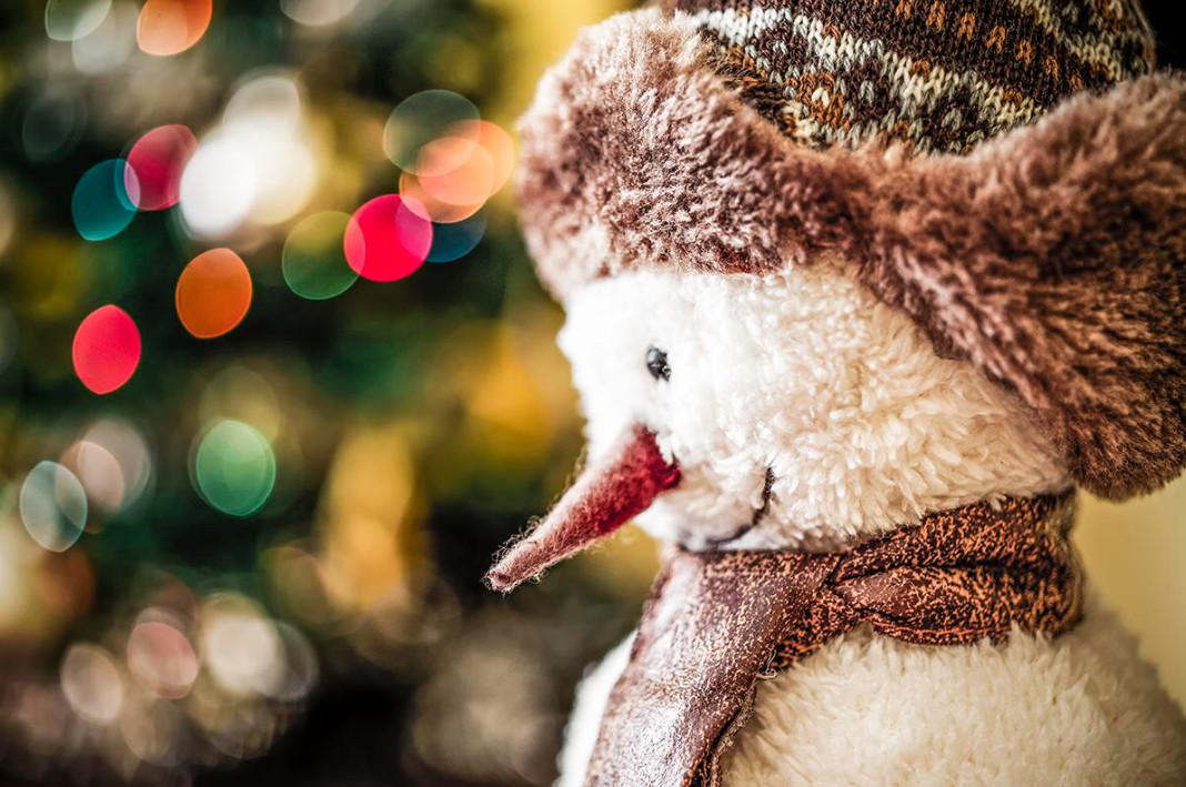 Снеговик. Фото: Ricardo Rios