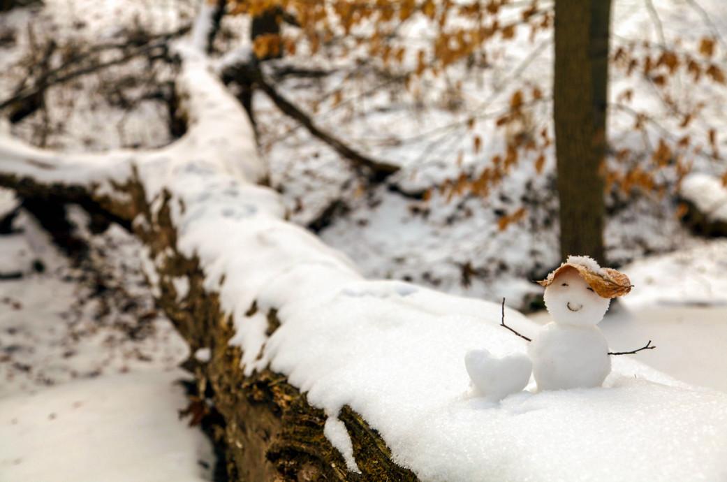 Снеговик. Фото: Kristy Yang