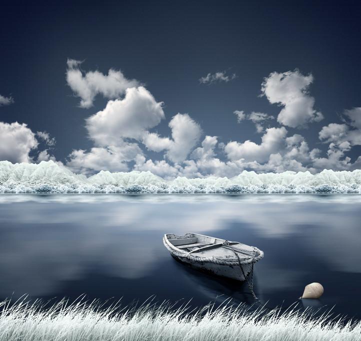 Зимний иней. Фото: Карас Йонут
