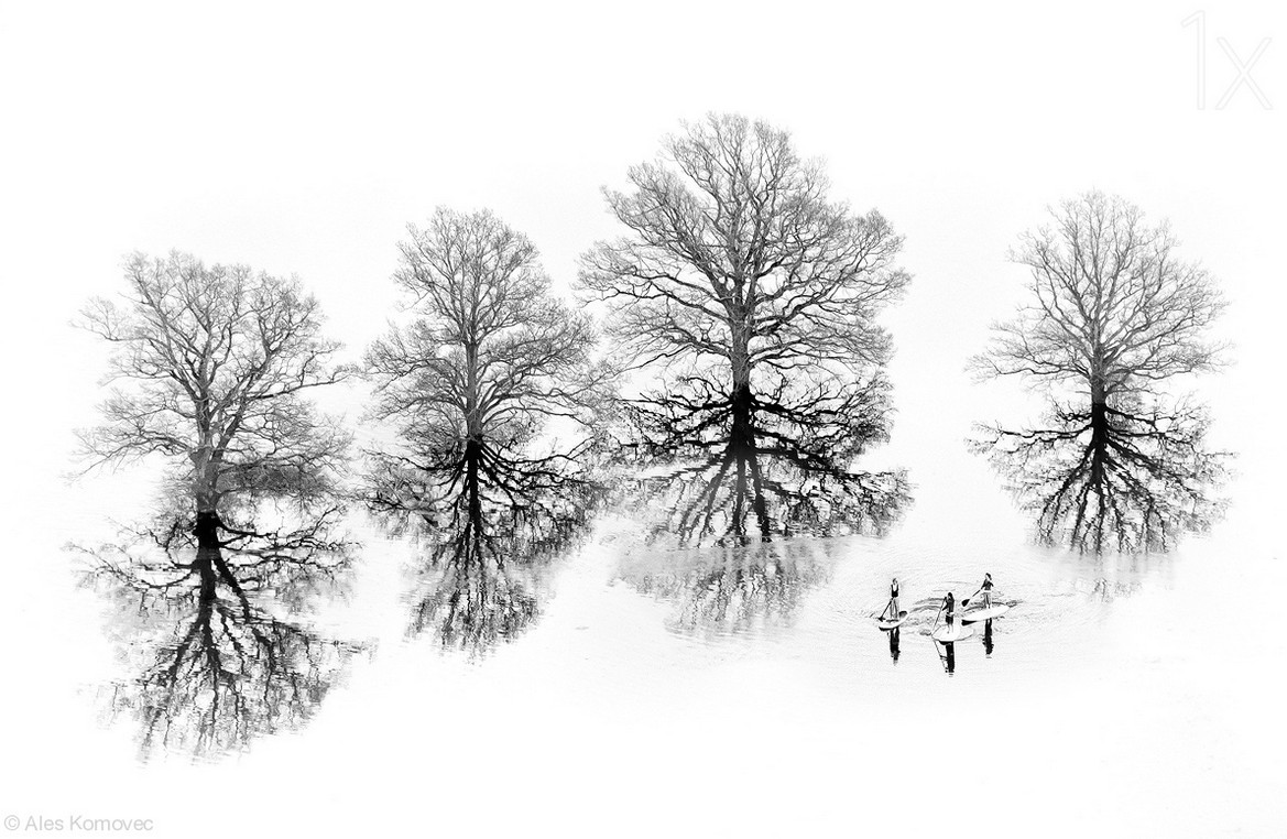 Фото: Aleš Komovec