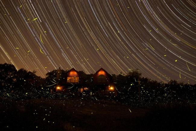 Рекомендация жюри: «Летние ночи в Мичигане». (Michael A. Rosinski/Astronomy Photographer of the Year)