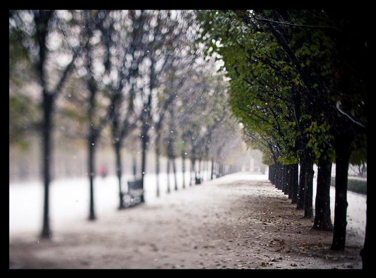 Одна из самых запоминающихся поездок в Париж, когда на этот город обрушился сильный снегопад, за пару часов заваливший все дороги