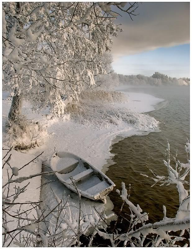 Заснеженное дерево и лодка