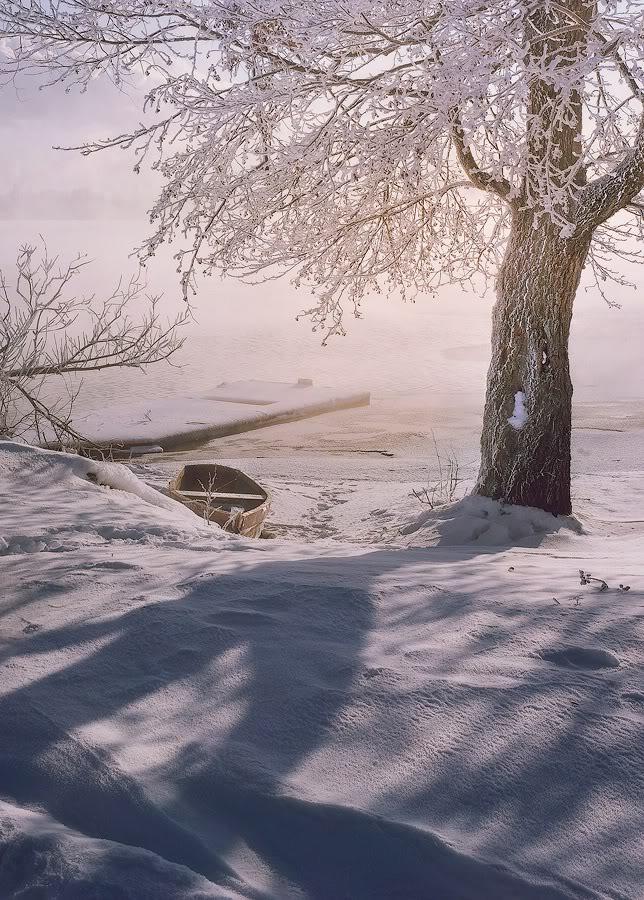 Зимний пейзаж у озера