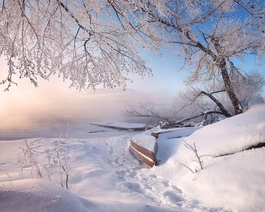 Зимний пейзаж у озера Шатура