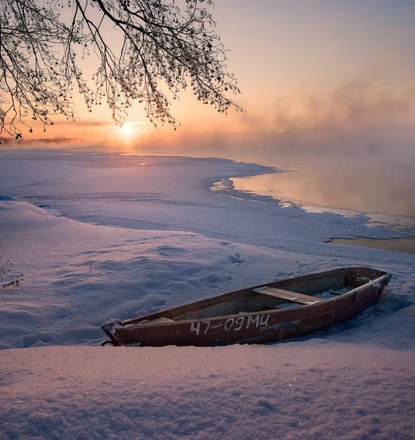 Розовый зимний рассвет