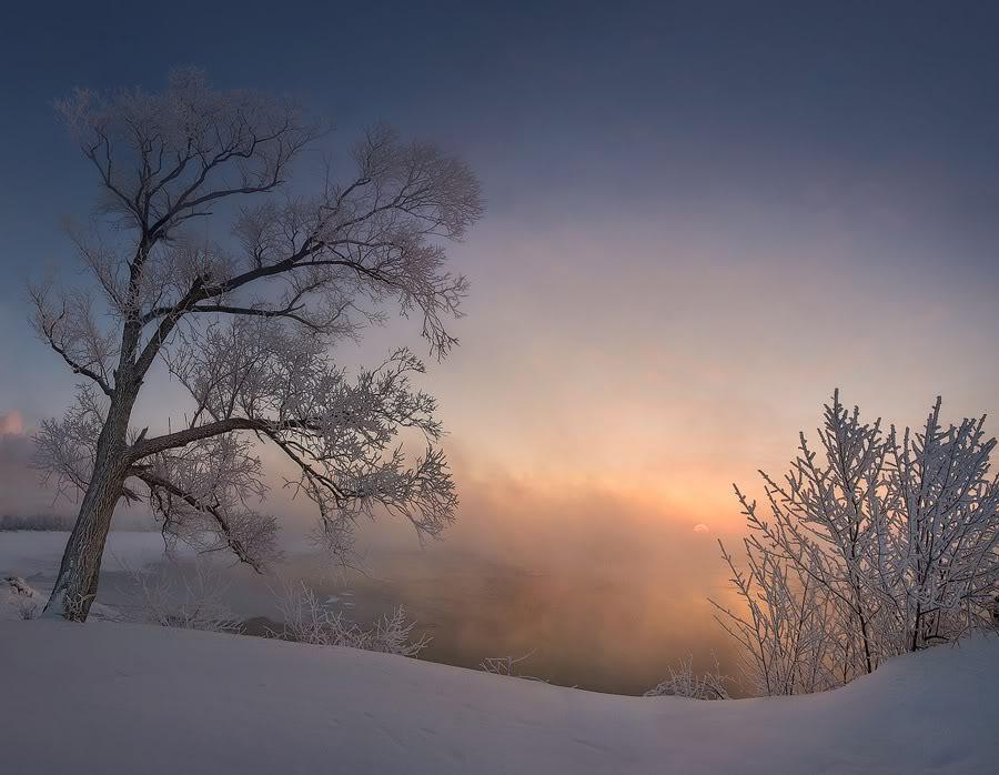 Зимний подмосковный пейзаж