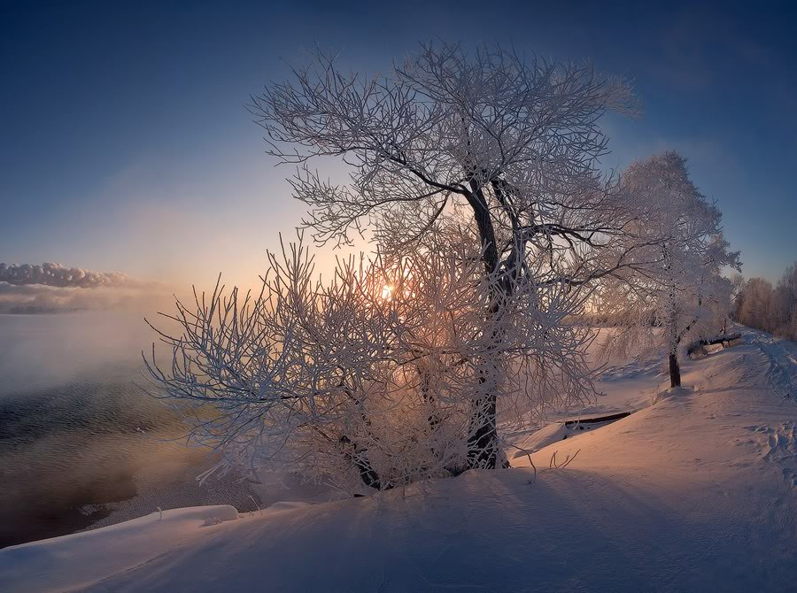 Шатура зимой