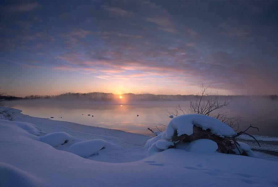 Зимняя Шатура