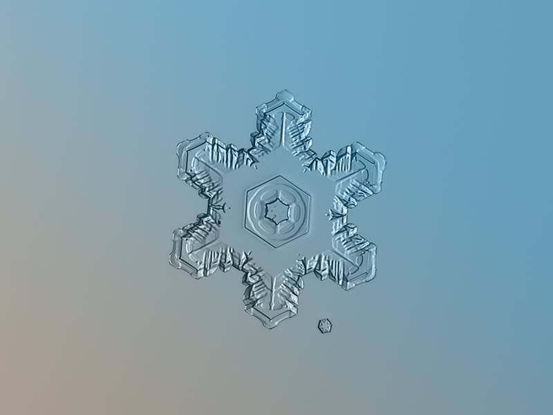 Макросъемка снежинок. Фото Алексея Клятова
