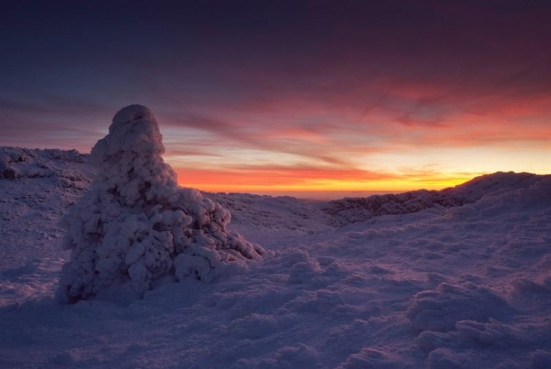 закат и зимняя природа