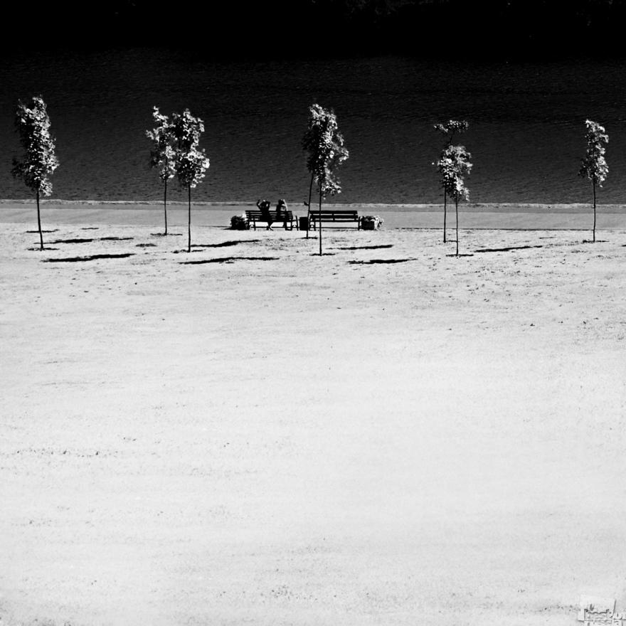 «В парке Коломенское». Вид на набережную. Вера Трандина, Москва