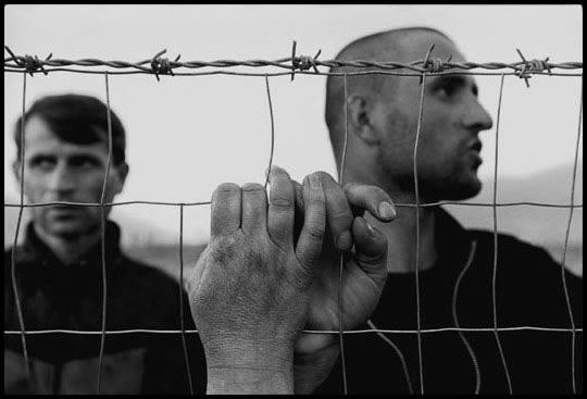 Албания, 1999 год