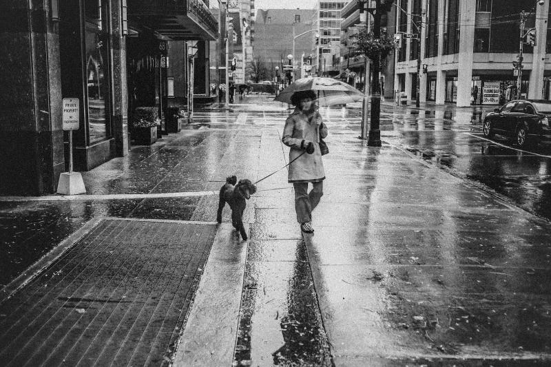 Дождь. Стрит фотография Никиты Ступина
