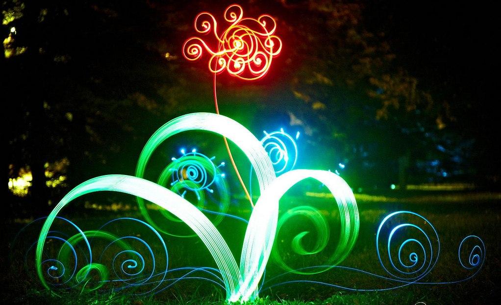 Цветок, фризлайт. Фото - lightpaint.ru