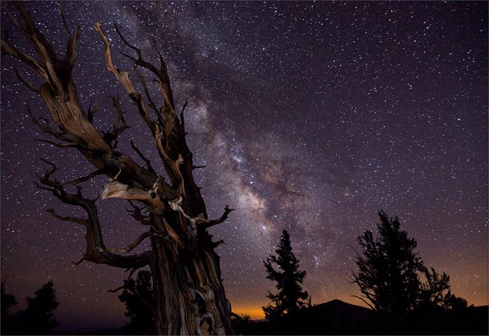 © Tom Lowe | Фото – победитель конкурса Astronomy Photographer of the Year – 2010 | 32 сек., f/3.2, ISO 3200, ФР 16 мм (Canon 5D Mark II + Canon EF 16–35 mm f/2.8 L USM)