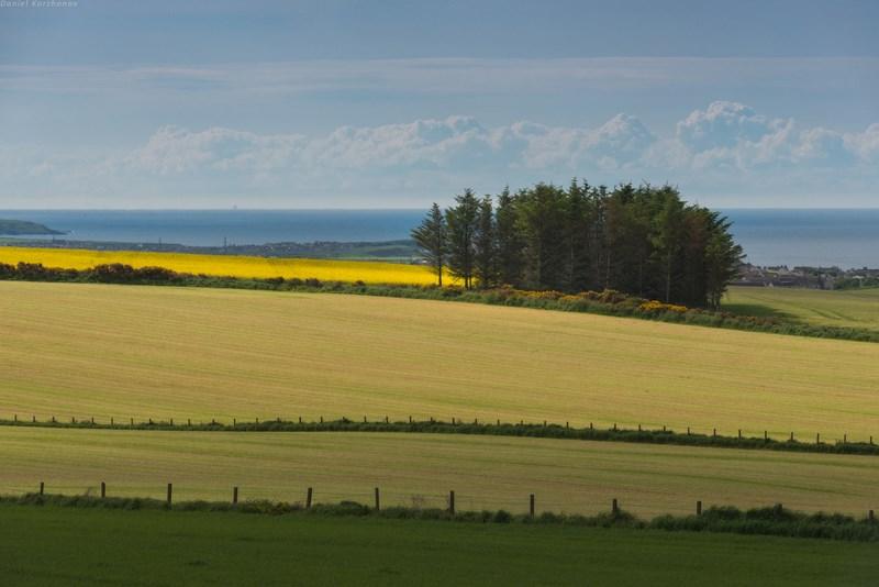 поля Шотландии