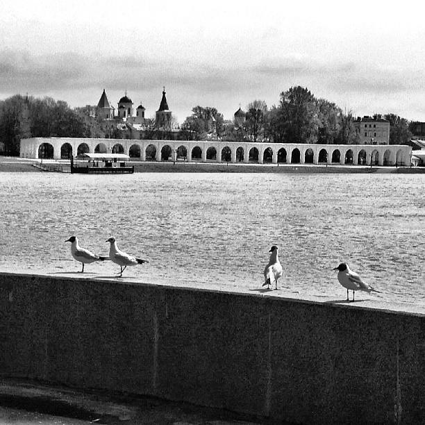 Набережная, Великий Новгород
