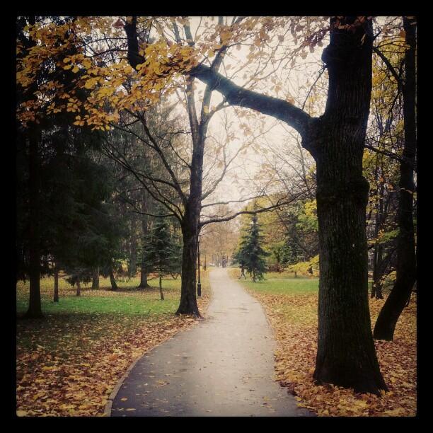 Осень, Великий Новгород