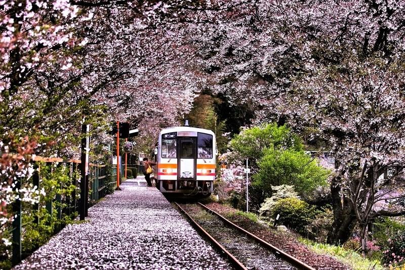 Фото: Minoru Matsumura