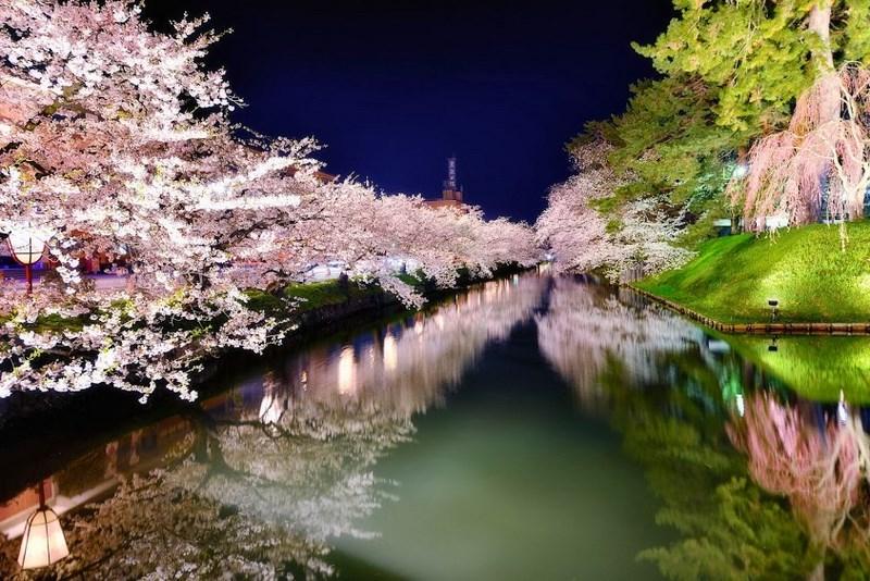 Фото: Sho Shibata